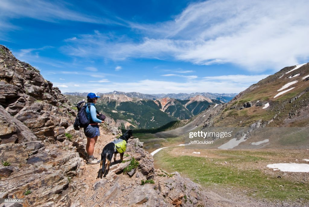 Hiker and Dog Looking at the View : Stock Photo