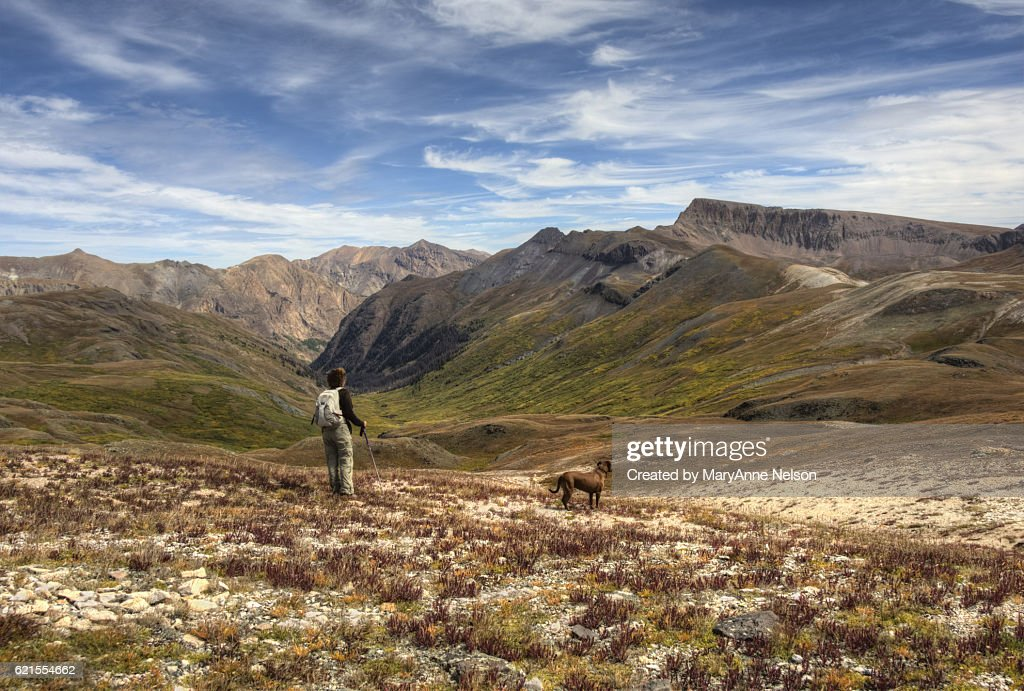 Hiker and Dog off Continental Divide Mountain Trail : Stock Photo