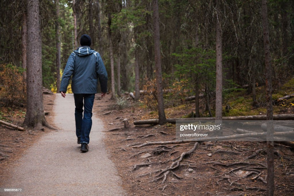 Hiker at Johnston Canyon in the Canadian Rocky Mountains, Alberta, Canada : Stock Photo