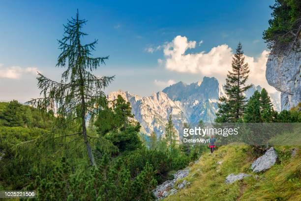 wanderer bei sonnenaufgang im alpen - nationalpark berchtesgaden - oberbayern stock-fotos und bilder