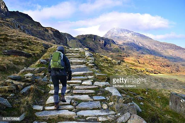 hiker climbing snowdon by the pyg tack. - mount snowdon stock photos and pictures
