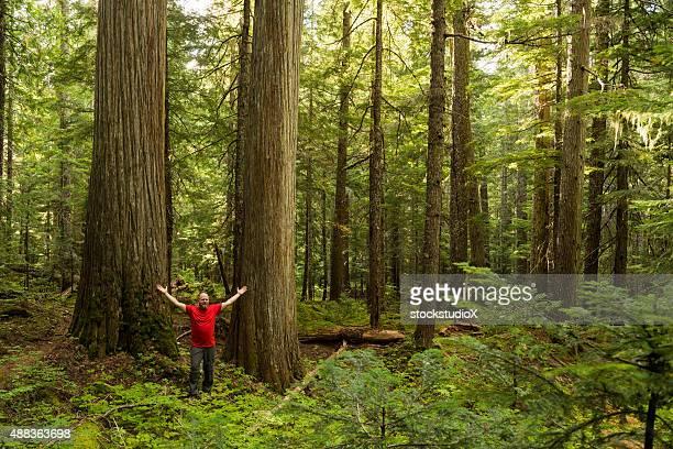 Hiker enjoying the sheer beauty of nature