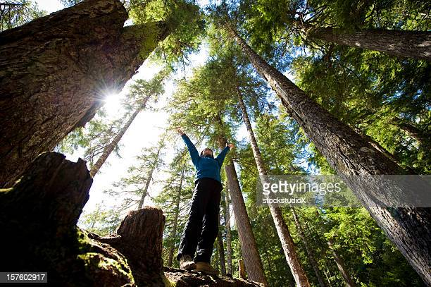 A hiker enjoying the temperate rainforest