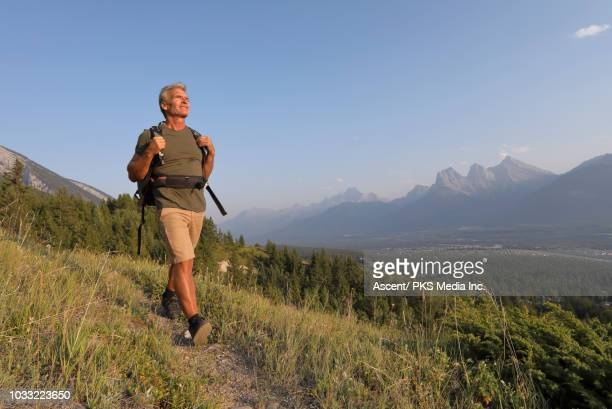 hiker follows alpine trail, looks off to view - beige shorts stock photos and pictures