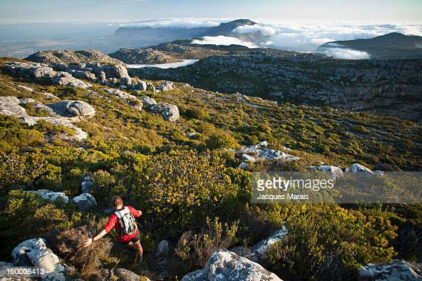 Hiker going down hill, Table Mountain, Cape Town, South Africa