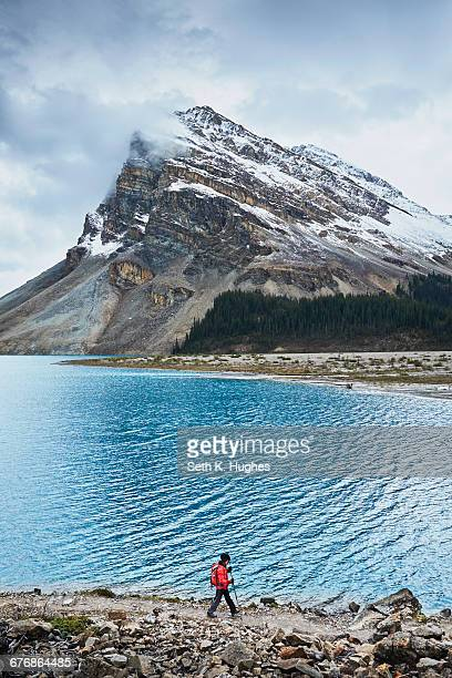 hiker hiking along bow lake, banff, alberta, canada - canadian rockies stockfoto's en -beelden
