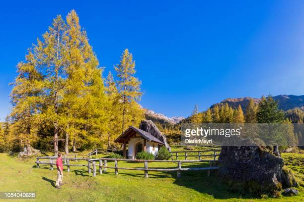 hiker in alps with little chapel in background - forstau in the province of salzburg - pinaceae stock pictures, royalty-free photos & images