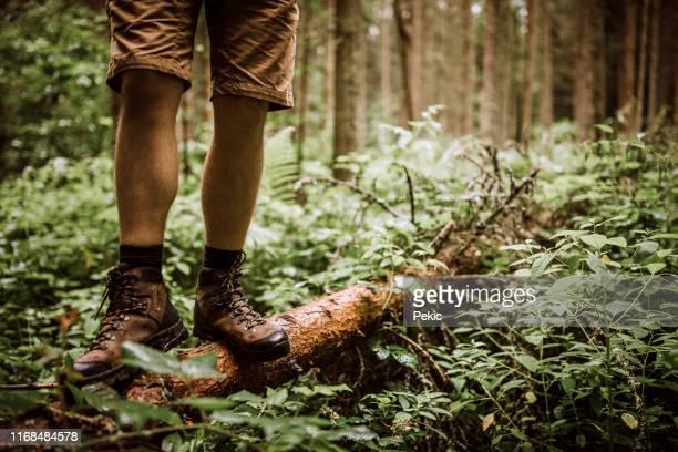 caminhante nas botas que estão no log na floresta - bota - fotografias e filmes do acervo