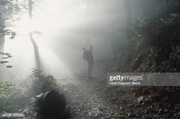 hiker in forest - heidi coppock beard stock-fotos und bilder