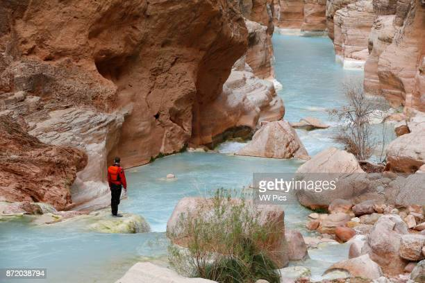 A hiker in Havasu Creek Grand Canyon National Park Arizona United States