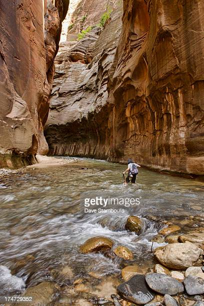 CONTENT] Hiker in The Narrows Zion National Park Utah
