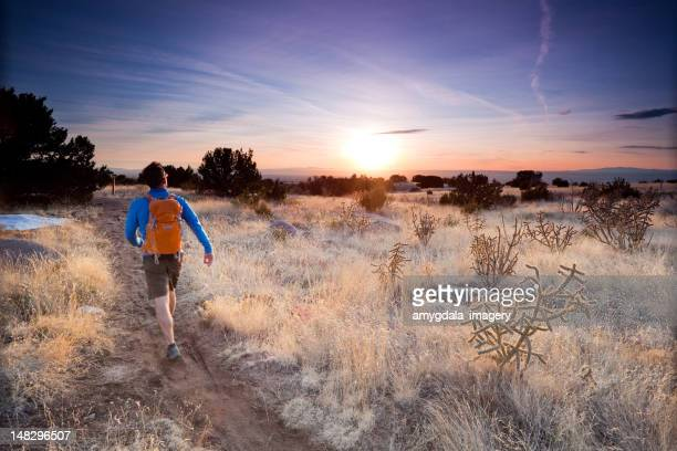 hiker landscape sunset - sonoran desert stock pictures, royalty-free photos & images