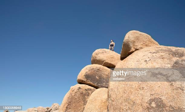 hiker looking at desert view from top of rocks in joshua tree national park, california - stellalevi stock pictures, royalty-free photos & images