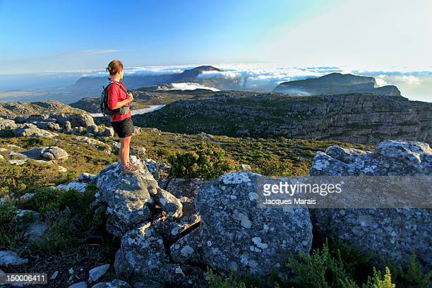 Hiker looking at landscape, Table Mountain, Cape Town, South Africa