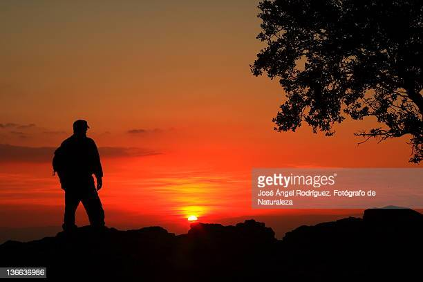 hiker looking sunset - fotógrafo stock photos and pictures