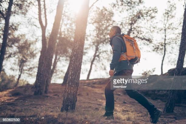 caminante a través de la selva - caminito del rey fotografías e imágenes de stock