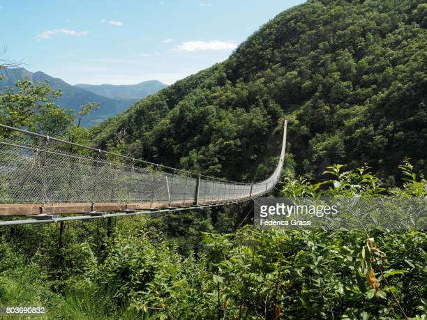 hiker on carasc suspension bridge, canton of ticino - ascona stock pictures, royalty-free photos & images