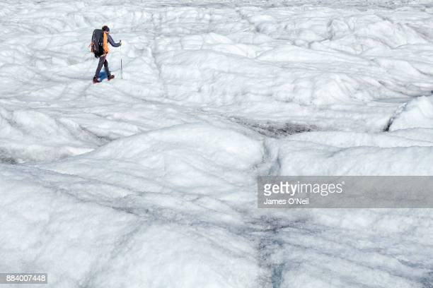 Hiker on glacier, Aletsch Glacier, Switzerland