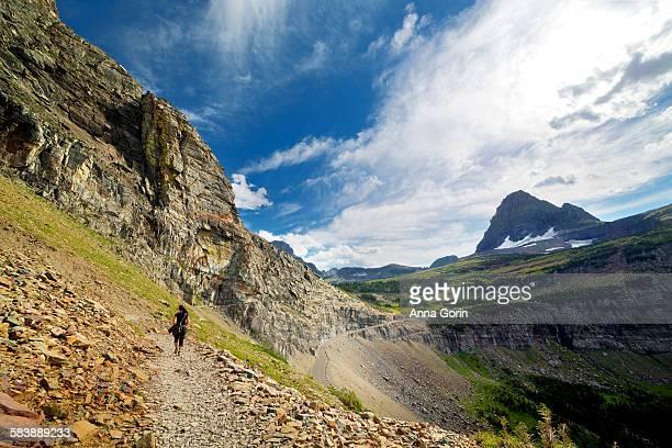 Hiker on Highline Trail in summer, Glacier Montana