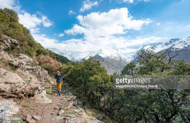 hiker on hiking trail, vereda de la estrella, behind sierra nevada, snow covered mountains near granada, andalusia, spain - granada provincia de granada stock pictures, royalty-free photos & images