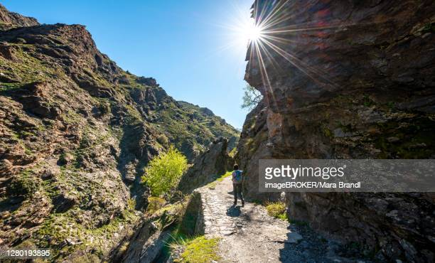 hiker on hiking trail vereda de la estrella, sierra nevada, mountains near granada, andalusia, spain - granada provincia de granada stock pictures, royalty-free photos & images