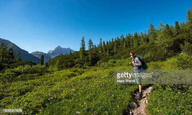 Hiker on hiking trail with flower meadow, behind Watzmann massif, Berchtesgaden National Park, Berchtesgadener Land, Upper Bavaria, Bavaria, Germany