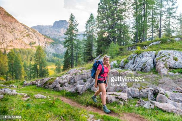 hiker on the ascent, hiking trail to feldkogel, berchtesgaden national park, berchtesgadener land, upper bavaria, bavaria, germany - oberbayern stock-fotos und bilder