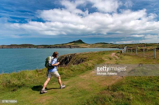 Hiker on the Pembrokeshire coast path approaching Whitesands bay and Carn Llidi, St Davids.