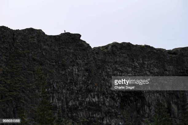Hiker on the Wall of Asbyrgi