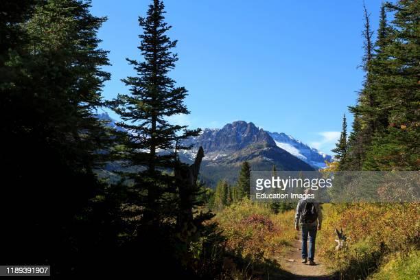 Hiker on Two Medicine Lake Trail Eastside of Glacier National Park Montana
