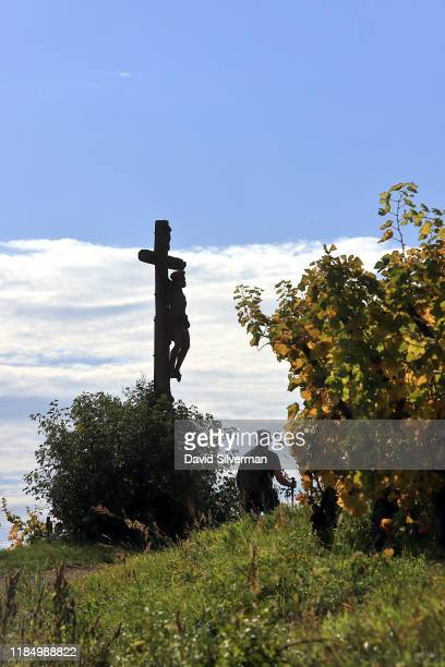 A hiker passes a sculptured stone crucifix while walking through the vineyards on October 13 2019 around the village of Turckheim in the Alsace...