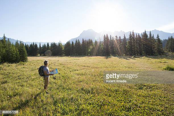 Hiker pauses in meadow, reviews map for direction