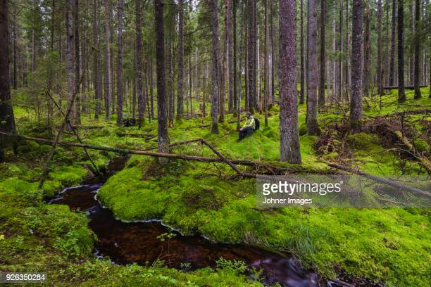 Hiker resting in forest