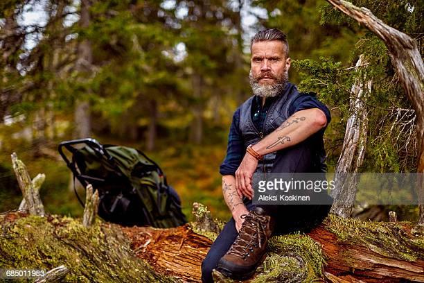 Hiker resting on fallen tree, Sarkitunturi, Lapland, Finland