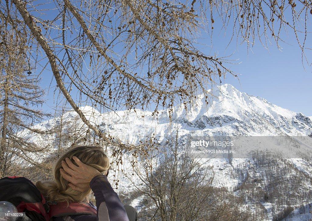 Hiker resting under tree : Stock Photo