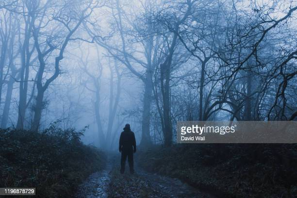 a hiker standing on a muddy, path through a spooky, eerie forest. on a mysterious foggy, winters day. - backpacker stock pictures, royalty-free photos & images
