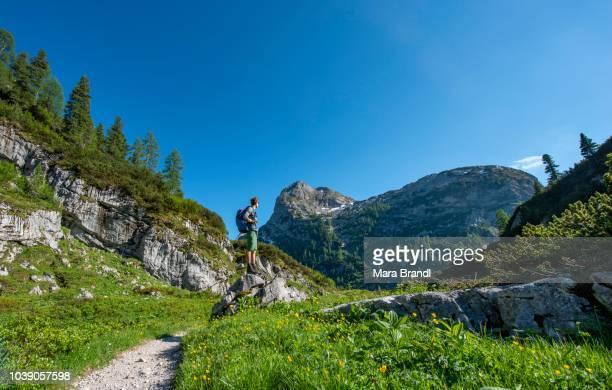 Hiker stands on rock, hiking trail to Kaerlingerhaus, behind Viehkogel summit, Berchtesgaden National Park, Berchtesgadener Land, Upper Bavaria, Bavaria, Germany