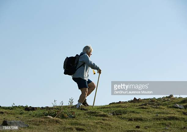 hiker using walking stick - hiking pole stock pictures, royalty-free photos & images