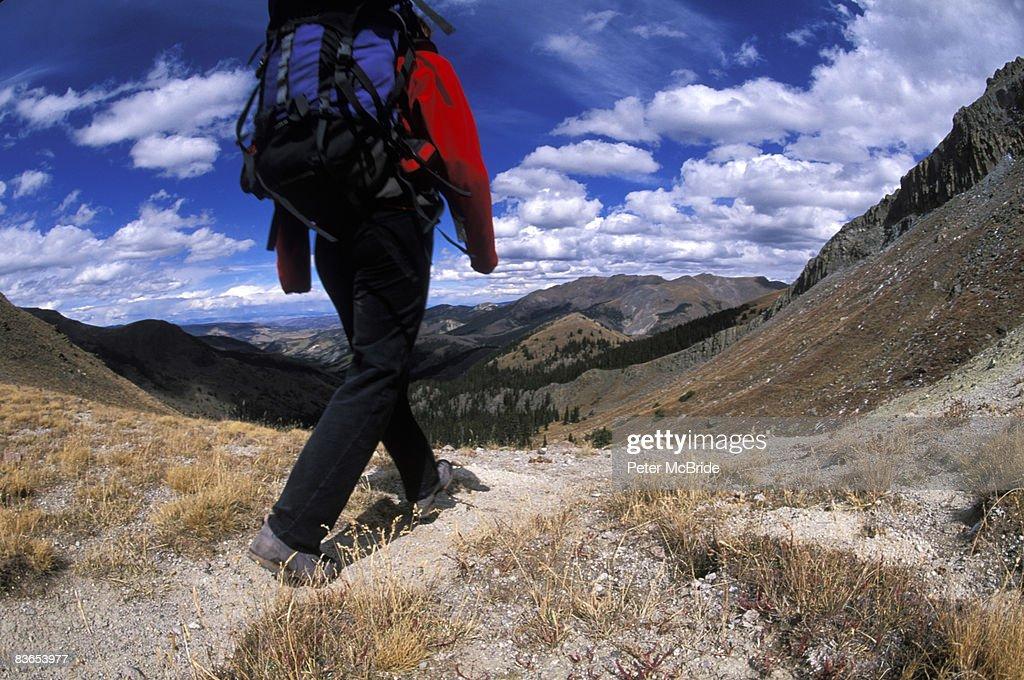 Hiker walking a trail : Stock Photo