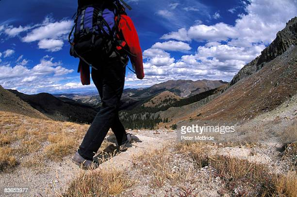 Hiker walking a trail