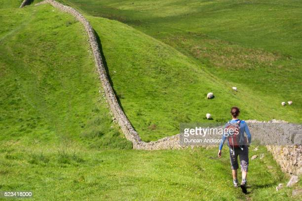 hiker walking alongside hadrians wall - surrounding wall stock pictures, royalty-free photos & images