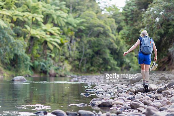 Hiker walking among stones in shallow stream, Waima Forest, North Island, NZ