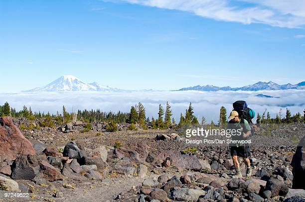 hiker walking through avalanche valley camp - dan peak stock photos and pictures