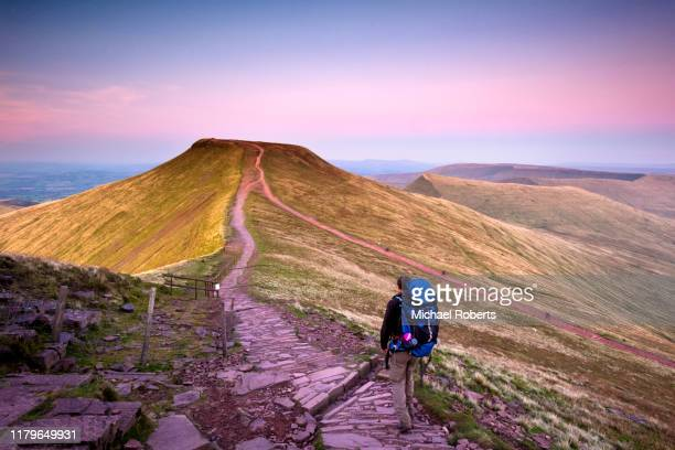 hiker walking towards pen y fan and cribyn seen from corn du in the brecon beacons, wales. - wales stock pictures, royalty-free photos & images