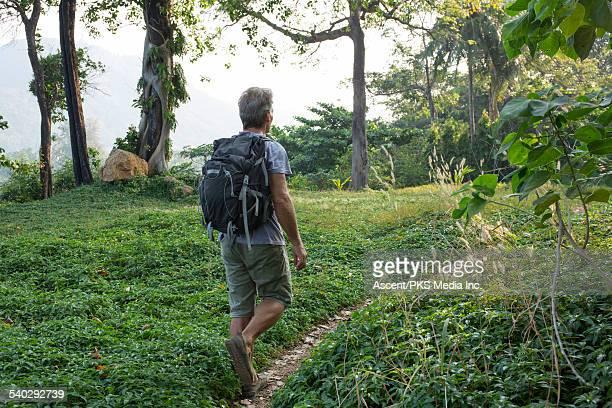 Hiker walks along trail under jungle canopy