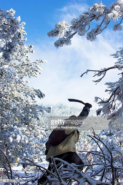 hiker with a a machete in one hand, goes through a clearing in the forest - machete stock pictures, royalty-free photos & images