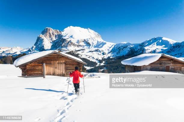 hiker with snowshoes, alpe di siusi, dolomites, italy - alto adige foto e immagini stock