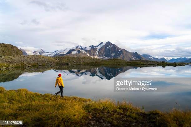 hiker woman admiring manzina lake, valtellina, lombardy, italy - parco nazionale foto e immagini stock