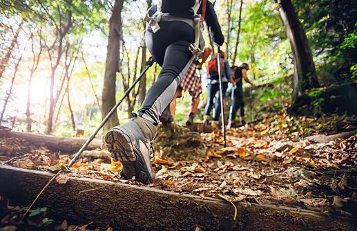 Hiker woman with trekking sticks climbs steep on mountain trail, focus on boot 1206631899