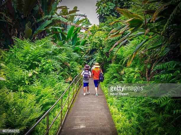Hikers, Akaka Falls, Hawaii